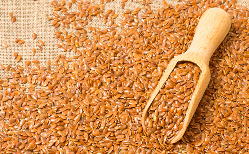 Fish oil versus flaxseed oil which is better energyfirst for Flaxseed vs fish oil