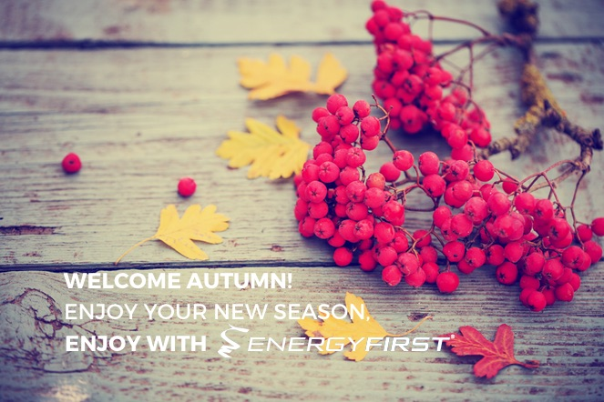 Have a Beautiful Autumn with EnergyFirst