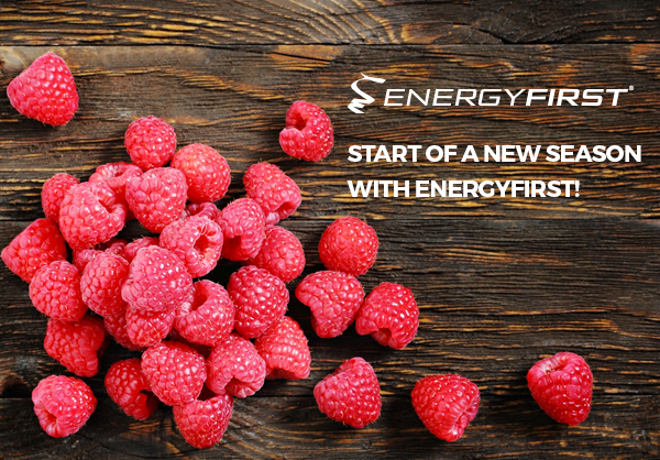 Start of a new season with EnergyFirst